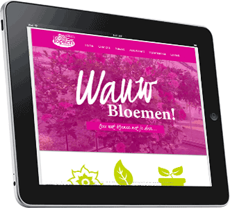 Wordpress webdesign Hardenberg